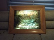 HELMSCENE Back-lit Framed Picture in Naperville, Illinois