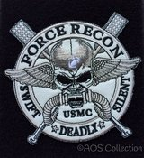 WTB Velco backed military patch(s) in Camp Lejeune, North Carolina