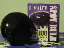 Halloween Blacklight Spot Bulb 100 Watt~Reduced in Yorkville, Illinois