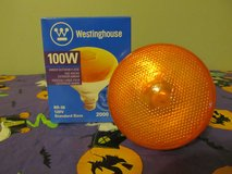 Halloween Orange Spot Light~100 Watt~Reduced in Yorkville, Illinois