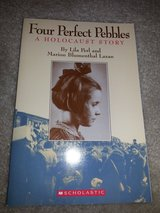 Four Perfect Pebbles - A Holocaust Story book in Camp Lejeune, North Carolina