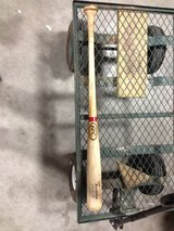 Carlos Lee game bat in Houston, Texas