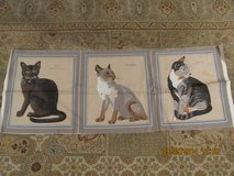 "Quilting ""Cat"" Squares in Kingwood, Texas"