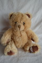 "Hershey Teddy bear Plush Brow 7""-9"" in New Lenox, Illinois"