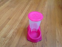 Pink pet food dispenser in Wheaton, Illinois