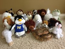 Webkinz in Naperville, Illinois