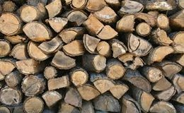 RICK of FIREWOOD in Clarksville, Tennessee