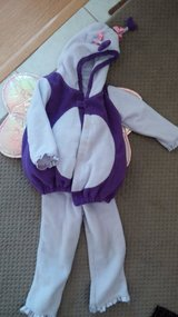butterfly costume--3t/4t in Naperville, Illinois