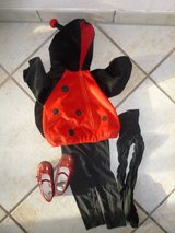 lady bug Halloween/Fasching costume 24 months in Stuttgart, GE