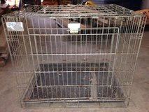Collapsible Kennel in Conroe, Texas