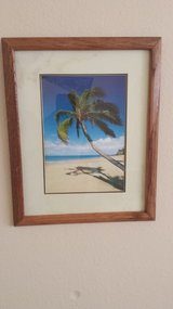 Hawaiian Picture in Conroe, Texas
