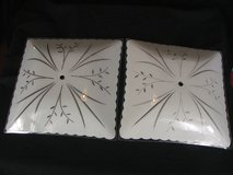 Antique Vintage Glass Ceiling Light Fixture Shades in Naperville, Illinois