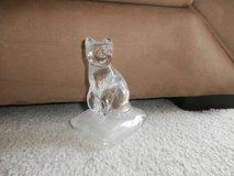 crystal Cat.... in Bartlett, Illinois
