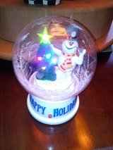 Frosty Snow Globe in Fort Campbell, Kentucky