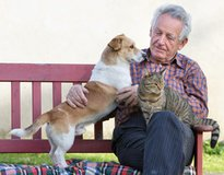 Senior Pet Food Pantry in Houston, Texas