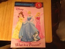 What Is A Princess? in Joliet, Illinois