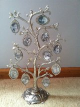 Family Tree photo stand in Naperville, Illinois