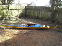 "REDUCED! EXCELLENT condition 15'5"" Eddyline Journey Kayak, paddle, and car top cushions! in Byron, Georgia"