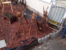 Outdoor Reindeer in Clarksville, Tennessee