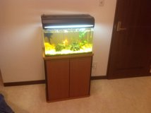 Makeman 57 liter/15 gal fish tank with stand and fish. in Okinawa, Japan