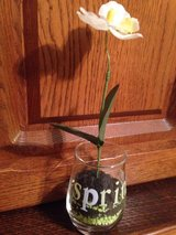 Adorable flower decor in Fort Campbell, Kentucky
