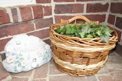 plant and basket in Kingwood, Texas