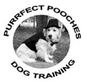 Dog Obedience Classes & Agility Class starting in AUGUST in Camp Lejeune, North Carolina