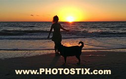 Turn your Photos into Real Professional Looking Postcards in Seconds! in MacDill AFB, FL