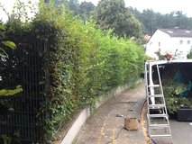 YARDWORK/JUNK REMOVAL/PCS/TRASH/PICKUP&DELIVERY in Ramstein, Germany