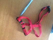 Small red adjustable pet/dog harness in Lockport, Illinois