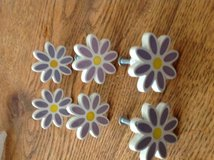 Draw Pulls. Dresser Purple Daisies in Fort Campbell, Kentucky