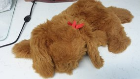 Stuffed Dog with Bow in Houston, Texas