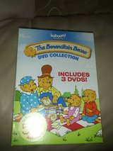 The Berenstain Bears DVD collection in Lockport, Illinois