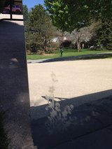 Mirror with pretty detail edge in Plainfield, Illinois