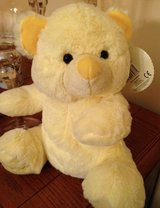My First Teddy in Oswego, Illinois