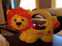 Learn 'n Pop Lion in Naperville, Illinois