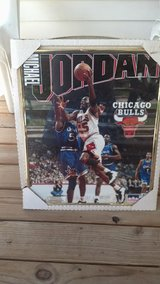 1995 starline Michael Jordan framed picture in Ottumwa, Iowa