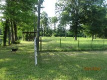 Horse Pasture for Rent in DeRidder, Louisiana