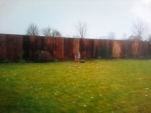 need a new fence or deck ?? in Lakenheath, UK