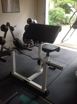 Curl bench with bar in Conroe, Texas