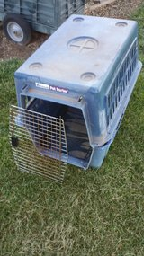 Large Pet Kennel in Fort Campbell, Kentucky