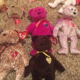 Beanie Baby in Bellaire, Texas