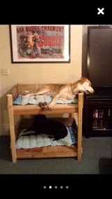 Pallet bunk bed dog cat animal pet twin in Camp Lejeune, North Carolina