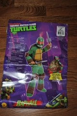 New TMNT Costume in Naperville, Illinois