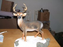 ~STANDING STAG on WOODEN BASE~(new) in Camp Lejeune, North Carolina