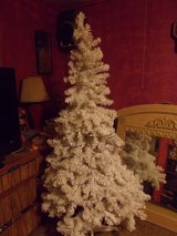 6' White Christmas Tree in Alamogordo, New Mexico