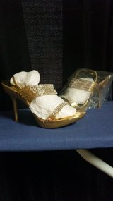 FANCY LADY's SHOES in Pasadena, Texas