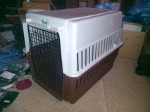 Travel Kennel for dogs/pets in Baumholder, GE