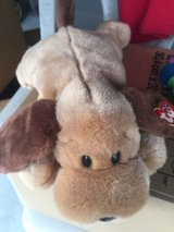 Ty beanie babies dog and 2 worms in Camp Lejeune, North Carolina