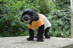 Small Dog Rain Coat in Stuttgart, GE